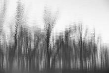 Abstract Blurry Dark Water Ref...
