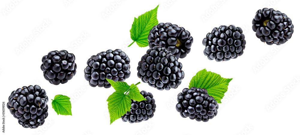 Fototapeta Ripe blackberry isolated on white background
