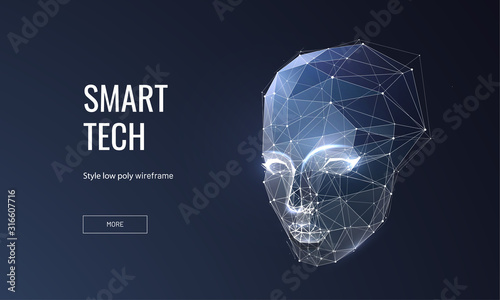 Smart technology low poly wireframe landing page template Wallpaper Mural