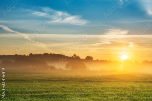 Beautiful summer sunrise over fields