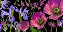 Three Poppies, Irises And Othe...
