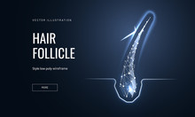 Hair Follicle Treatment Low Po...