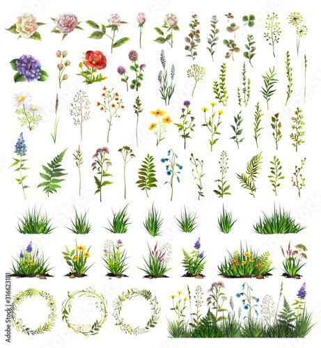 Carta da parati Big floral elements set