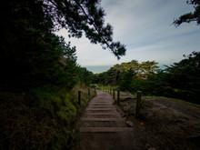 Steps On A Walking Trail At La...