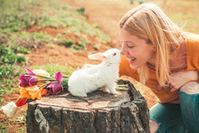 Alice In Wonderland. Easter Bu...