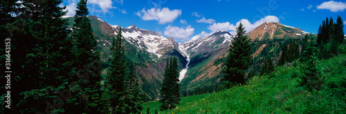 This is an image of the Rocky Mountains in the summer Canvas Print