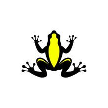 Vector Frog