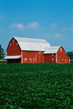 This Is A Midwest Farm. It Has...
