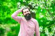 Leinwandbild Motiv Portrait of bearded farmer. Handsome man spend time in the blossom orchard. Portrait of bearded man against blossom green spring field.