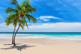 Sunny white sand beach with coconut palm and turquoise sea. Summer vacation and tropical beach concept.