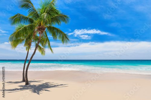 sunny-white-sand-beach-with-coconut-palm-and-turquoise-sea-summer-vacation-and-tropical-beach-concept