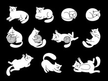 White Doodle Cat Character. Cute Domestic Cats Vector Illustration, Funny Kitty Sketch, Hand Drawn Lying And Sleeping, Jumping And Playing Kittens On Black Background