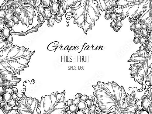 Fotomural Grape frame