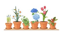 Spring Flowers. Floral Decorative Interior Elements. Isolated Tulips In Pot, Houseplant On Shelf Vector Illustration. Interior Bloom Flower In Pot, Floral Tulip Gardening