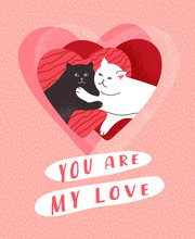 You Are My Love. Cute Cats In ...