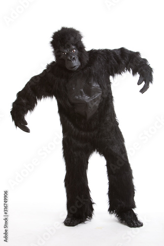 Vászonkép Young man wearing a gorilla costume against white background