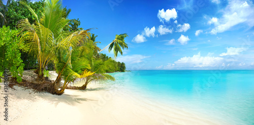 Obraz Beautiful beach with white sand, turquoise ocean, blue sky with clouds and palm tree over the water on a Sunny day. Maldives, perfect tropical landscape, wide format. - fototapety do salonu