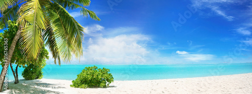 Beautiful tropical beach with white sand, palm tree,  turquoise ocean on  background blue sky with clouds on sunny summer day Fototapeta