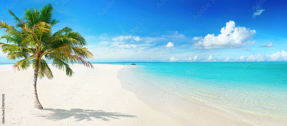 Fototapeta Beautiful palm tree on tropical island beach on background  blue sky with white clouds and turquoise ocean on sunny day. Perfect natural landscape for summer vacation, ultra wide format.