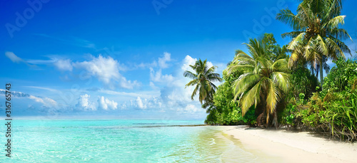 Obraz Beautiful tropical beach with white sand, palm trees,  turquoise ocean against blue sky with clouds on sunny summer day. Perfect landscape background for relaxing vacation, island of Maldives. - fototapety do salonu