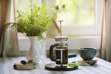 Summer Morning At Wooden Cottage Kitchen With Coffee And Wild Ferns In Vase