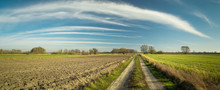 Panorama With A Dirt Road And ...