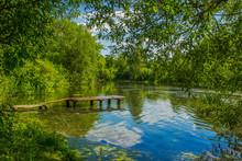 Summer Time Green Nature Lands...