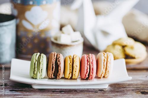 Macarons pistache chocolat mangue fraise vanille posés sur une assiette blanche Canvas Print