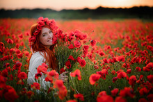 Young Female With Bouquet Of Red Poppies Sitting In Flowered Field At Sunset