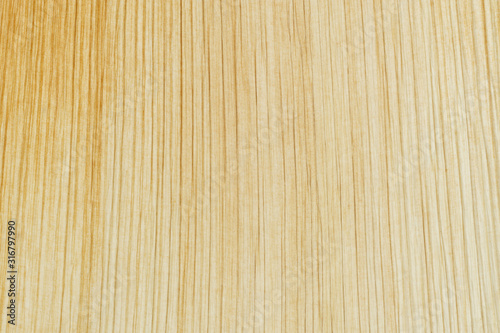 Close up macro shot of Eco-friendly plate texture background made from leaves of the Areca Nut Palm Canvas Print