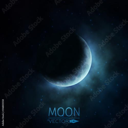 Canvas-taulu Crescent Moon