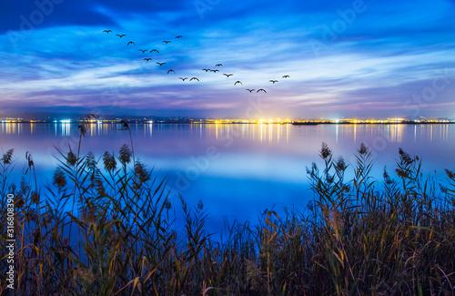Photo paisaje de una noche en el lago