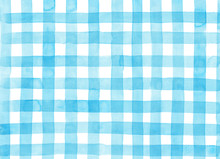 Light Blue Check Pattern Paint...