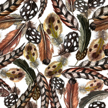Seamless Pattern Of Realistic Domestic And Wild Birds' Feathers. Guinea Fowl, Quail, Pheasant, Partridge, Duck. Watercolor Hand Painted Isolated Elements On White Background.
