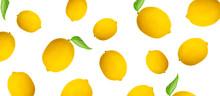 Whole Lemon Pattern On A White...