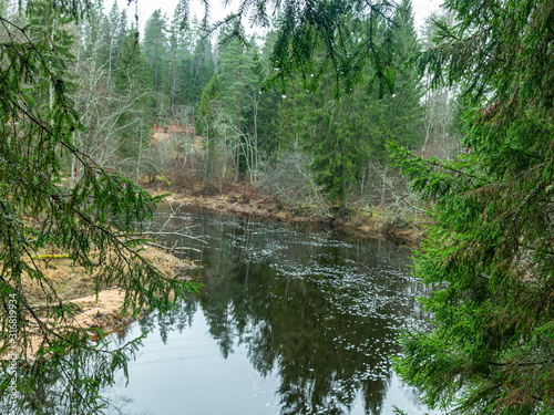landscape with small river and green trees ashore Wallpaper Mural