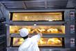 Leinwandbild Motiv Baker putting baked artisan bread