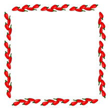 Square Frame Of Isolated Peppe...