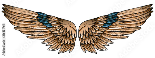 Obraz na płótnie Beautiful spreaded hand drawn eagle brown wings with turquoise feathers, vector