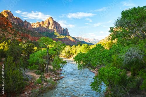 Fototapeta Spring green in Zion, Utah, USA. obraz