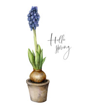 Watercolor Hello Spring Card W...