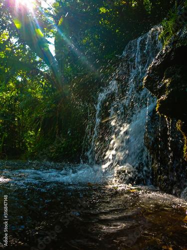 Cascada en un lago dentro de un bosque con un resplandor en la esquina Wall mural