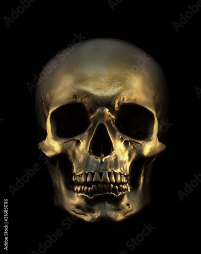 Photo Gold Skull Isolated