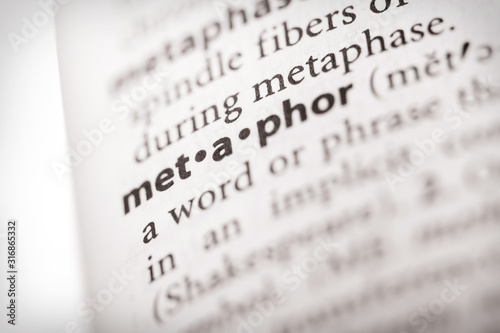 Cuadros en Lienzo  Dictionary Series - Metaphor