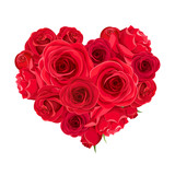 Fototapeta Kwiaty - Vector Valentine's day heart of red roses isolated on a white background.