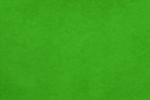 Cardboard Green Abstract Patte...