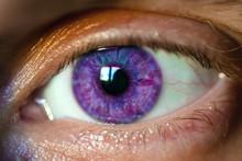 Male Eye With Purple Iris, Macro
