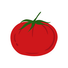 Tomato In Hand Drawn Style Iso...