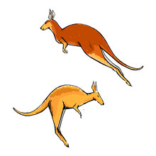 Creative Collection Of Two Kangaroos In Motion In Sketch Style.