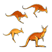Colored Kangaroo Set In Sketch Style Isolated On White.